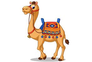 Beautiful camel cartoon vector
