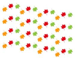autumn Leaf vector illustration