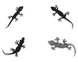 Eidechsen-Chamäleon-Gecko-Schattenbildschwarzvektor