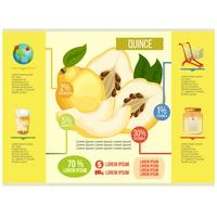 quince infographic vector