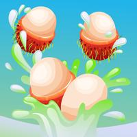 rambutans splash vector