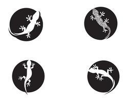 Lizard Chameleon Gecko Silhouette negro vector