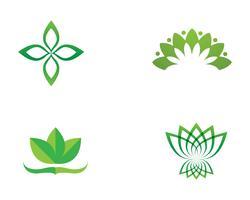 Icona del modello di vettore del fiore e di simboli del fiore di loto