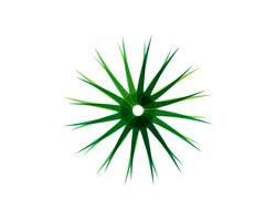 Blad groene bloemenpatronen logo en symbolen op een witte achtergrond