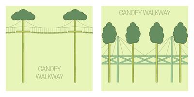Canopy walk way.