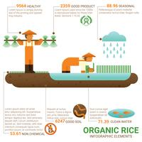 Healthy food organic rice vector