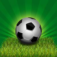 Bola de futebol na grama vetor