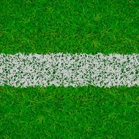 voetbal gras achtergrond