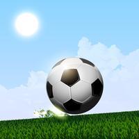 palla da calcio che gira