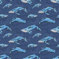 Walvis naadloze patroon hand getrokken