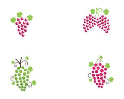 grape purple and green vector illustration