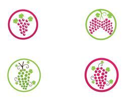 grape purple and green vector illustration