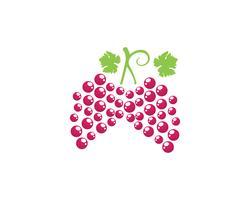Weintraube lila und grün Vektor-Illustration