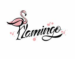 Flamingo. Belettering. Stijlvolle inscriptie.Blots. Vector.