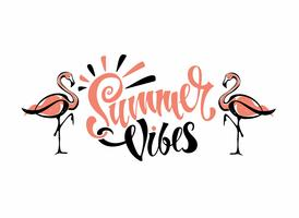 Summer vibes. Lettering.  Flamingos are pink. Invitation to leave. Card. Calligraphy. Stylish inspirational description. Vector.