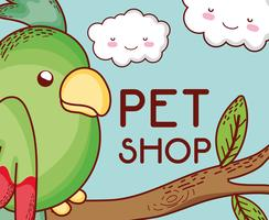 Parrot on tree branch pet shop