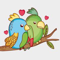 Perroquets sur la branche d'arbre