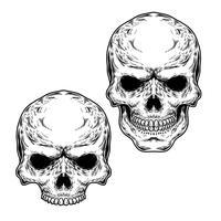 Set of two skulls