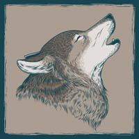Vector illustration of a howling wolf