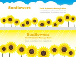 Satz nahtloser Hintergrund des Vektors zwei mit Sonnenblumen und Textraum.