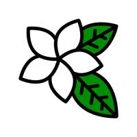 Plumeria vector, tropical related filled style icon