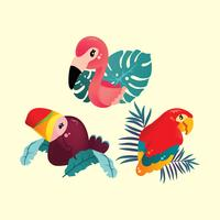 Cute Tropical Birds vector