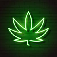 Medical Cannabis Logo Leaf Glowing Neon Sign.