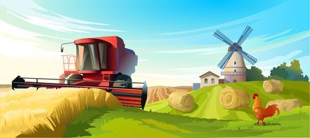 Vector ilustración paisaje rural de verano