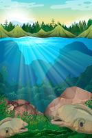 Monstruo marino nadando bajo el agua