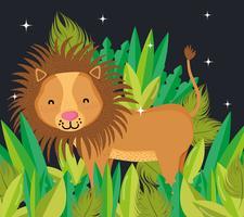 Lion cute wildlife