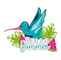 Hello summer card