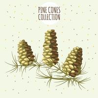 Brown pines cone on yellow background