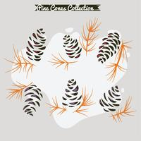 Colorful pine cones on pine branch vector