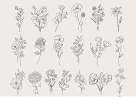 Doodle de fleurs