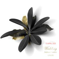 Tropical black and gold leaf on white background