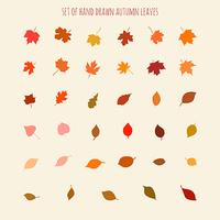 Set of vector hand drawn leaves silhouettes