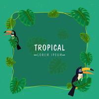 Frontière de palmiers tropicaux