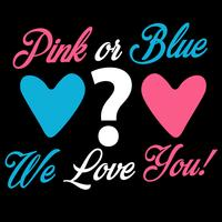 Pink Or Blue We Love You vector