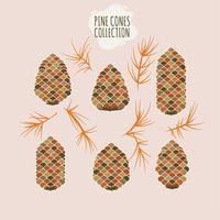 Pine cone Collection of Christmas tree branches with pine cones and mistletoe  vector