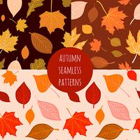 Set of vector hand drawn autumn seamless patterns