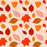 Vector hand drawn autumn seamless pattern
