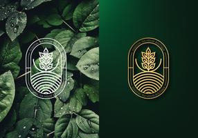Logo de hojas de te