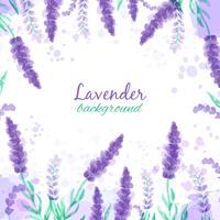 Lavendelhintergrund mit Blumen. Nachgemachtes Design des Aquarells mit Farbe spritzt Art der Vektorillustration Provence. Zeichnen für Grußkarten, Einladungen