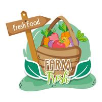 Farm fresh cartoons