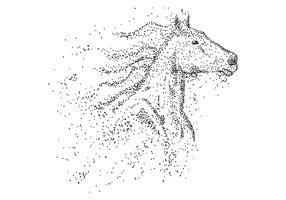 Illustrazione vettoriale di particella testa di cavallo