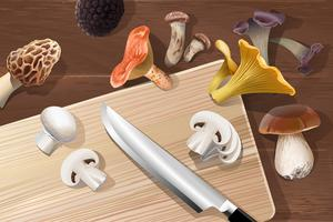 Vector background with various kind of edible mushrooms