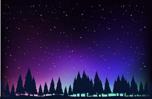 Scene with pine trees at night