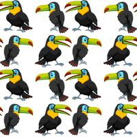 Toucan on seamless wallpeper