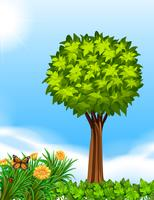 Plats med träd i trädgård