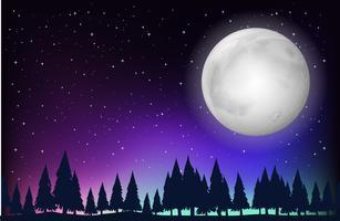 Scena della natura con luna piena e foresta